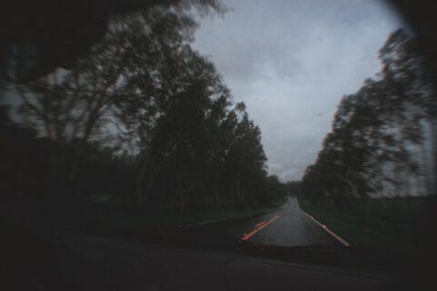 car-on-road-between-trees-3563923
