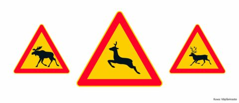 hirvielaimet-ja-kolme-varoitusmerkkia